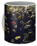Fish Aquarium Coffee Mug