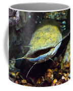 Fish Lips Coffee Mug