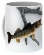 Fish Mount Set 02 A Coffee Mug