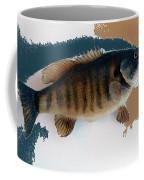 Fish Mount Set 10 Cc Coffee Mug