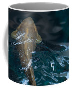 Fish Of The St. Lawrence Coffee Mug