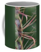 Fishhook Barrel Cactus Spines Coffee Mug