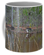 Fishing Feline Coffee Mug