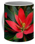 Flame Of Jamaica Coffee Mug