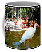 Flamingo Park Florida Coffee Mug