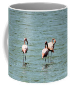 Flamingos Gathering Together Coffee Mug