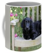 Flat-coated Retriever Puppy Coffee Mug