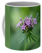 Flattering Compliments Coffee Mug
