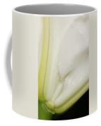 Flawless Connection Coffee Mug