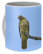 Fledged Red Tailed Hawk Coffee Mug