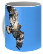 Fledgling Bald Eagle 5078 Coffee Mug