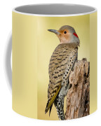 Flicker Coffee Mug