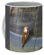 Flicker Looking At His Reflection Coffee Mug