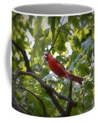 Flight Of The Cardinal Coffee Mug