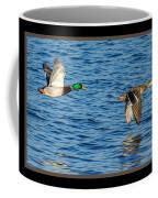 Flight Of The Mallards Coffee Mug