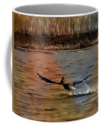 Flight Of The Pelican-featured In Wildlife-newbies And Comfortable Art Groups Coffee Mug