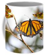 Flirting Monarch Coffee Mug