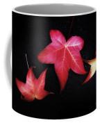 Flirting With You Coffee Mug