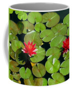 Floating Red Water Lilly Flowers On Pond Coffee Mug
