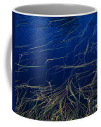 Floating Weeds In Picture Lake Coffee Mug