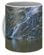 Flood Falls II Coffee Mug