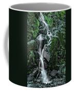 Flood Falls Coffee Mug