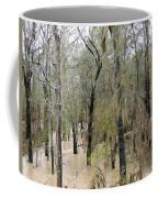 Flooding Dry Creek Coffee Mug