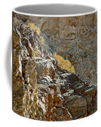 Flora In Sunlight In Big Painted Canyon Trail In Mecca Hills-ca Coffee Mug