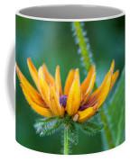 Floral Fuzz Coffee Mug