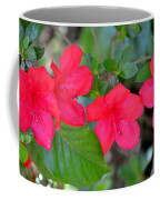Floral Hedge Coffee Mug