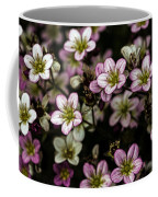 Floral Wallpaper Coffee Mug