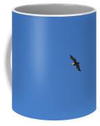 Florida Bird In Flight Coffee Mug