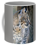 Florida Bobcat Coffee Mug