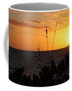 Florida Delight Coffee Mug