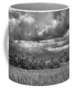 Florida Everglades 0184bw Coffee Mug by Rudy Umans