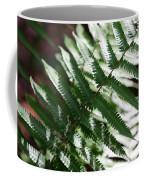 Florida Fern Coffee Mug