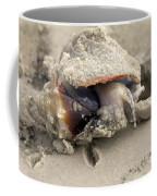 Florida Fighting Conch Coffee Mug