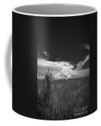 Florida Flat Land Coffee Mug