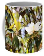 Florida Magnolia Coffee Mug