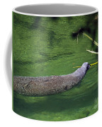 Florida Manatee  Coffee Mug