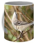 Florida Mockingbird Coffee Mug