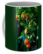 Florida Oranges Coffee Mug