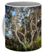 Florida Scrub Oaks Painted   Coffee Mug