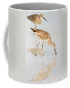 Florida Shorebirds - Willets In Their Summer Finery Coffee Mug