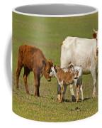 Florida Spanish Cattle Coffee Mug