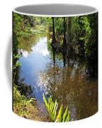 Florida Stream Coffee Mug