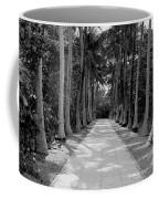 Florida Walkway Black And White Coffee Mug
