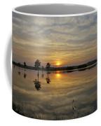 Florida Wetlands Coffee Mug