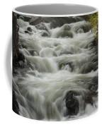 Waterflow Coffee Mug