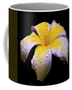 Flower 171 Coffee Mug